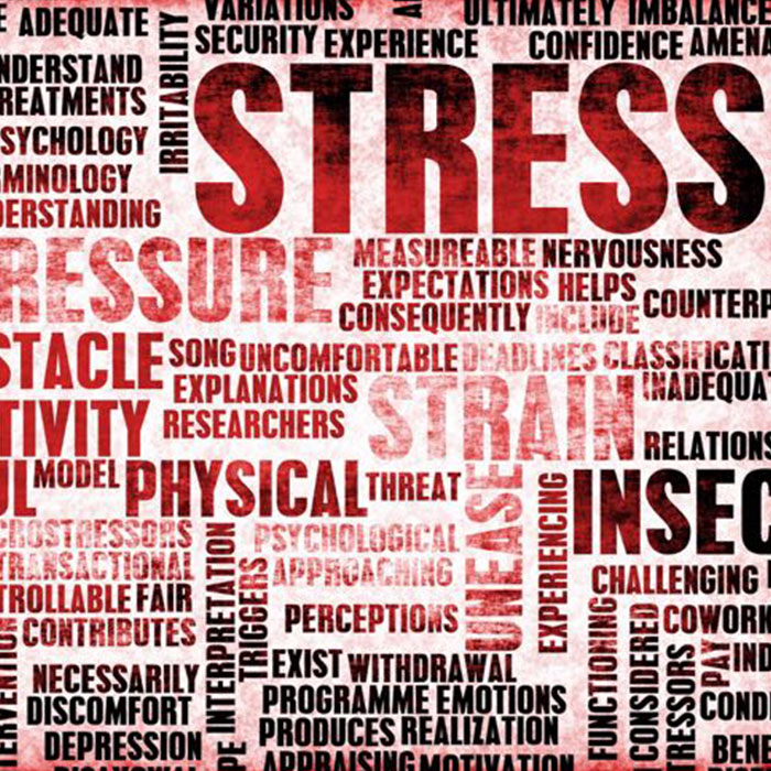 5 Tips to Manage Your Stress